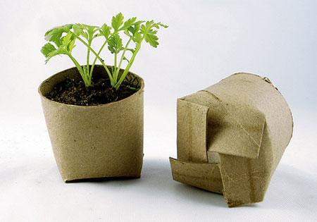 Riutilizzare-il-cartoncino-della-carta-igienica-per-far-crescere-le-piantine